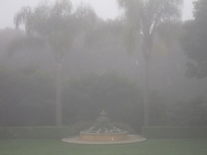Sunny Santa Barbara?