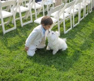 Soho makes a friend