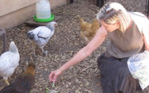 Pamela brought treats for the chickens