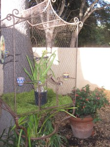 We found the French bird cage at a store that's going out of business. Flowering Maple in the pot at right.