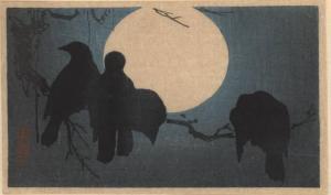 crowsmoonlight