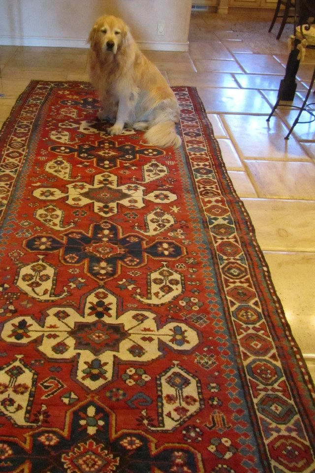 Chloe poses with a Caucasian rug, most of which come from Azerbaijan