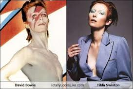 Doubletake: Bowie and Swinton (image from cheezburger.com)