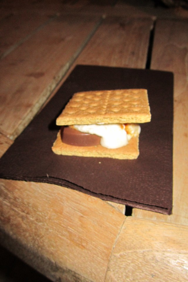 Yummy S'mores!