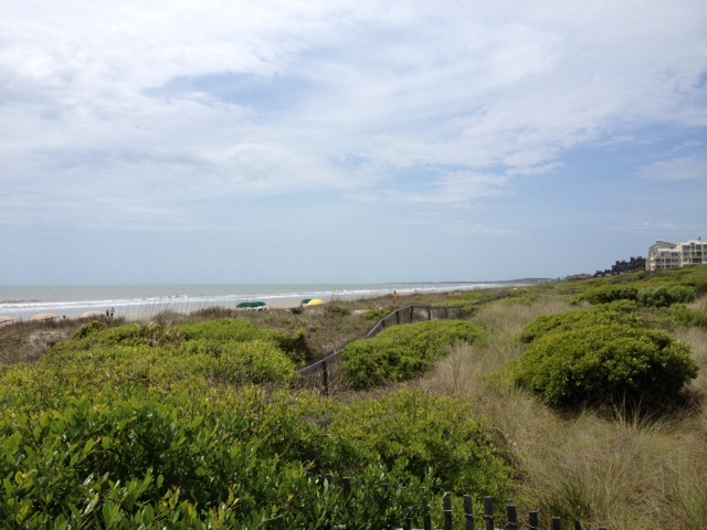Beach bluffs at Kiawah Island