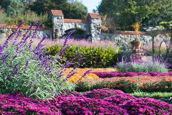 Biltmore garden (image from biltmore.com)