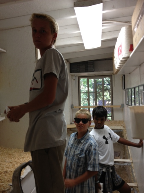 The younger cousins helped clean up the chicken coop. Thanks, guys!