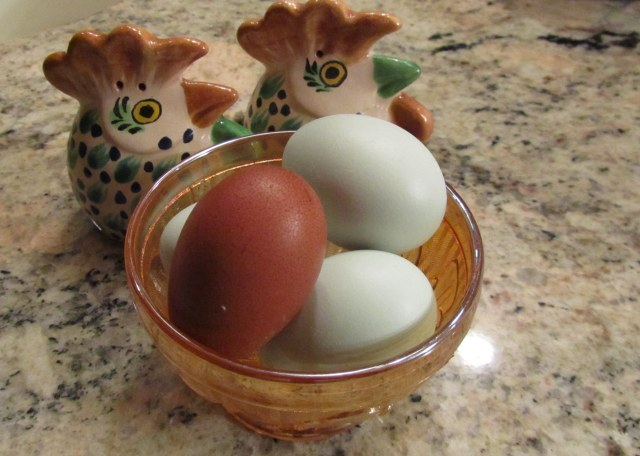 One of Tulip's eggs along with some of Coco's.