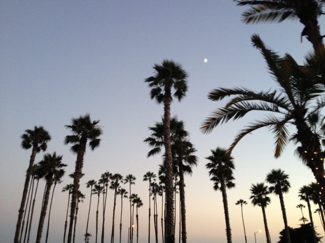 It was a great place to watch the moon rise over Chase Palm Park.