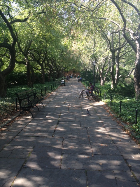 One of the many manicured paths in the Conservatory Garden.