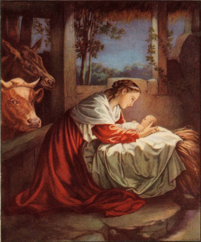 In the manger. (image from 123hallelujah.wordpress.com)