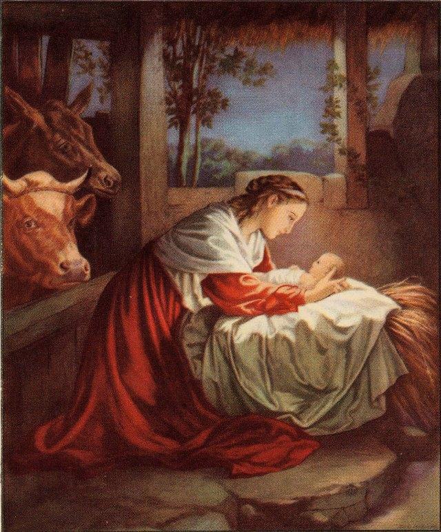 In the manger. (image from 123hallelujah.wordpress.com)