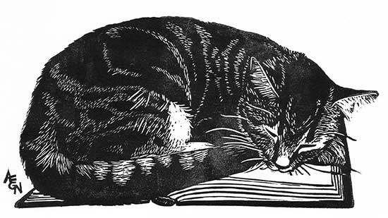 There's nothing better than curling up with a good book! (image from nydamprints.com)