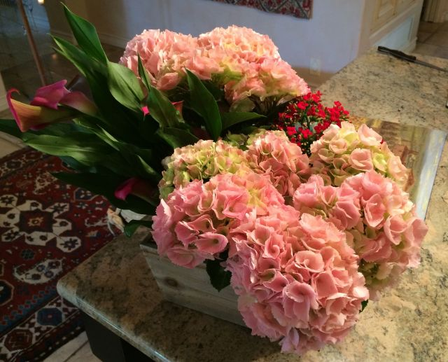 It was a bit hard to leave home after these gorgeous birthday flowers arrived from Daniel.