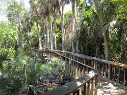 Gumbo Limbo is accessed via a charming wooden bridge. (image from ouroutdoortravels.blogspot.com)
