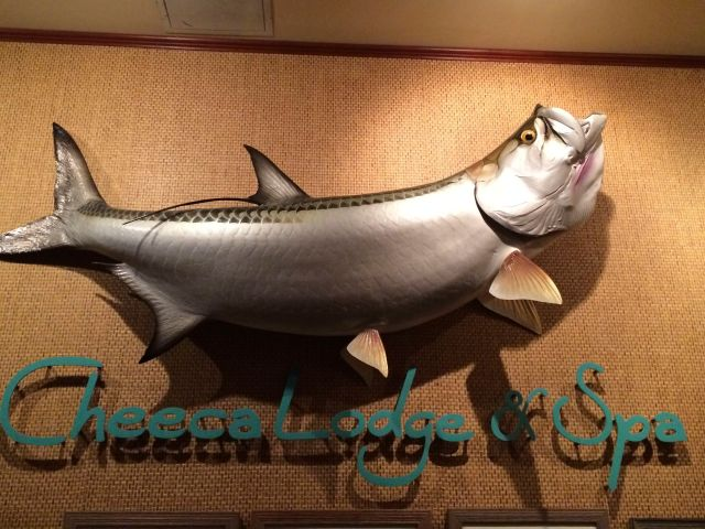 You know you've arrived when you see the stuffed tarpon in the lobby.