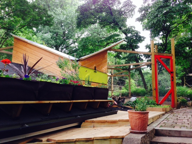 Note that the roof is slanted to catch rain water for the adjacent garden bed.