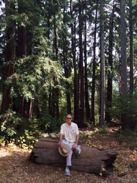 The CE under the redwoods at Jack London State Historic Park