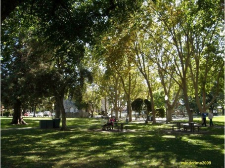 Sonoma has a lovely, leafy town square. (image from virtualtourist.com)