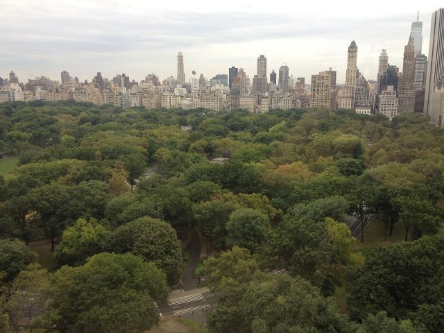 Wait for me, Central Park! I'll be back as soon as I can!