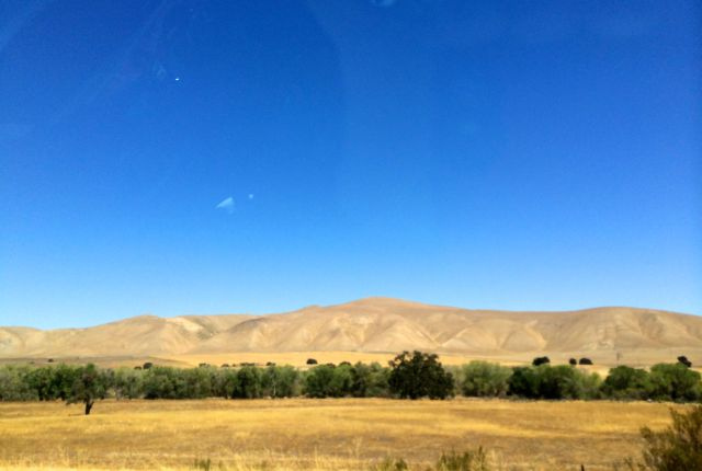 It was a seven-hour drive through parched central California. Pray for rain this winter!