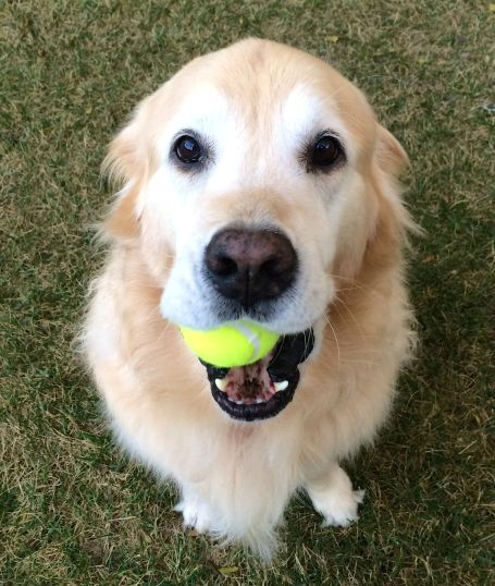 Could we stop talking about it and just throw the ball for me now?