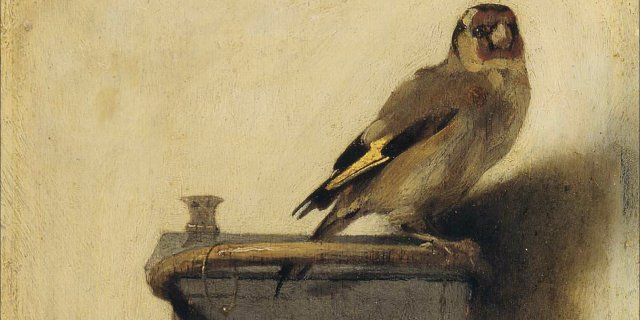 "Fabritius' painting took on a new life with Donna Tartt's ""The Goldfinch"" (huffington post image)"