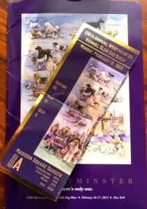 Proof we were there: ticket to the 139th Westminster Kennel Club Dog Show