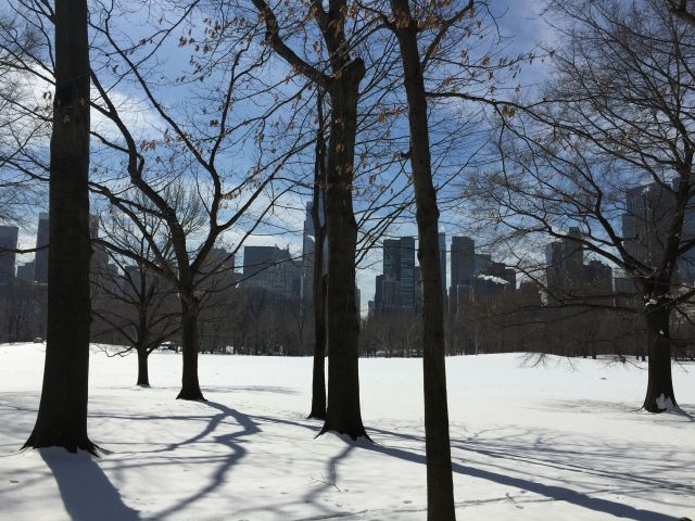 Sheep Meadow in Central Park under a winter blanket of snow.