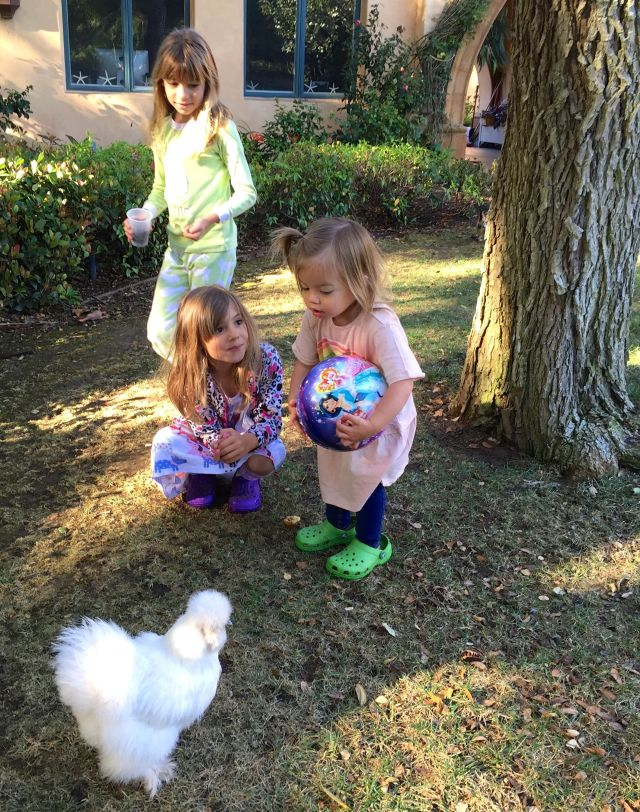 Evie and Viv taught Caleigh the ropes of being a flock keeper.