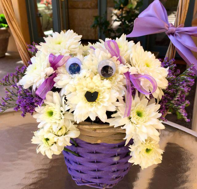 Pamela brought this adorable Soho daisy doppleganger.
