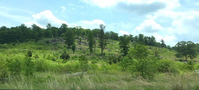 A view of Little Round Top