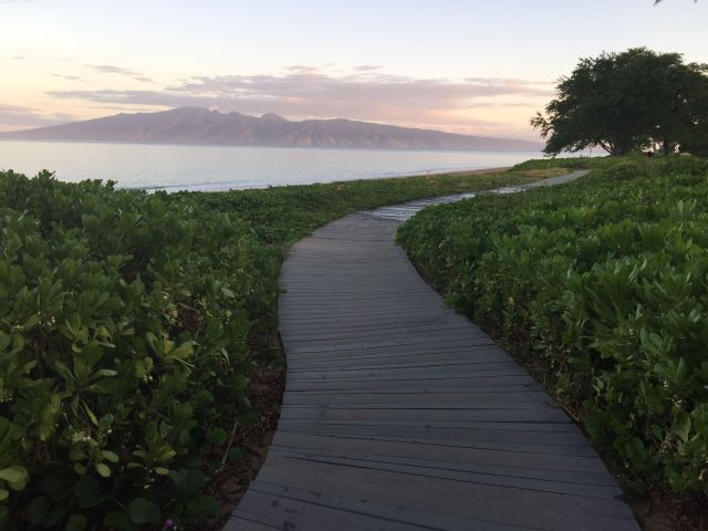 The Beach Walk to North Ka'anapali is not to be missed.