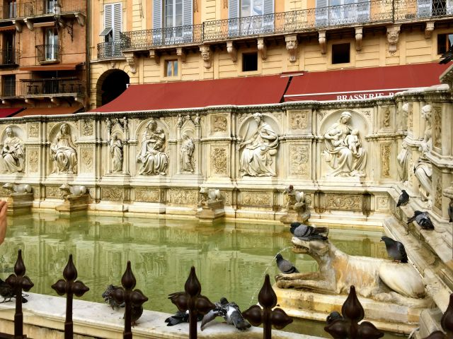 The pigeons show no fear of the wolves in the Fonte Gaia in the Piazza del Campo.