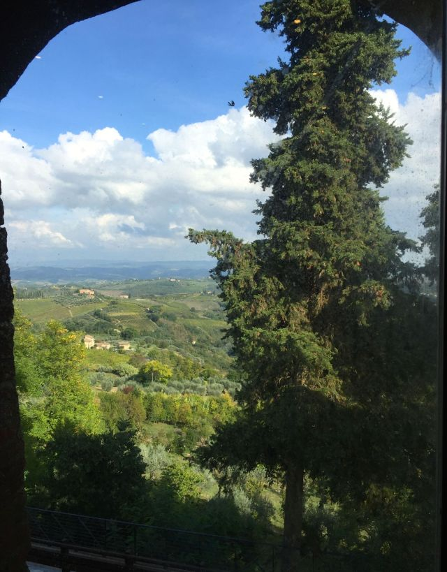 I guess it's worth going to San Gimignano just for the view.