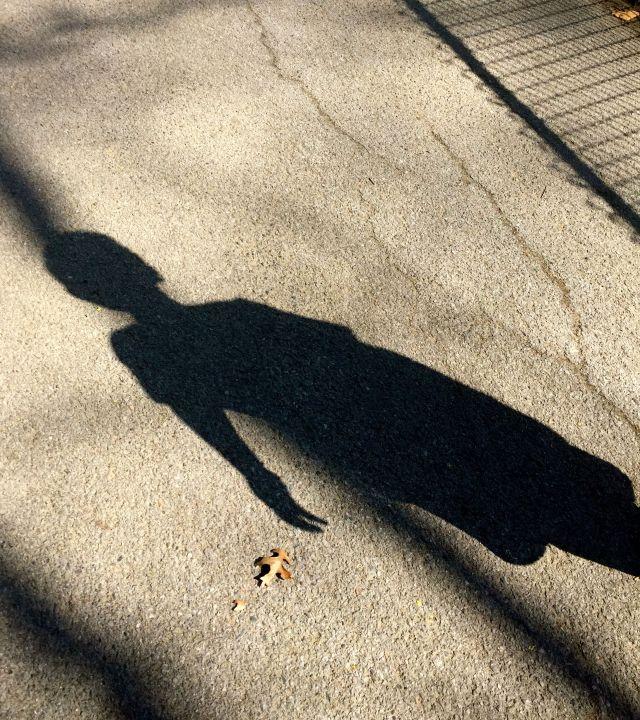 shadow central park april 2016