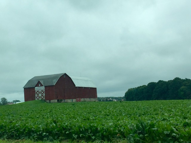 barnmichigan