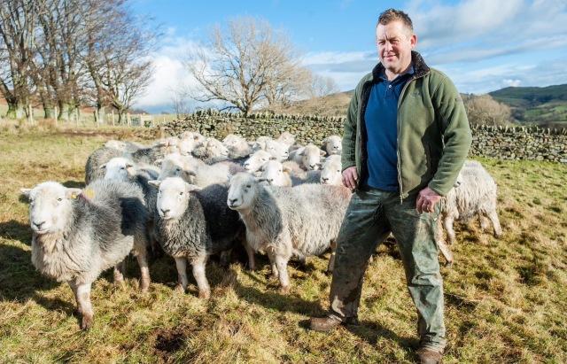 james-sheep2_trans_NvBQzQNjv4BqtGQB12KHxxQCrwnTZkX0nwgWqwm85JEWpGVhFb46TTg.jpg