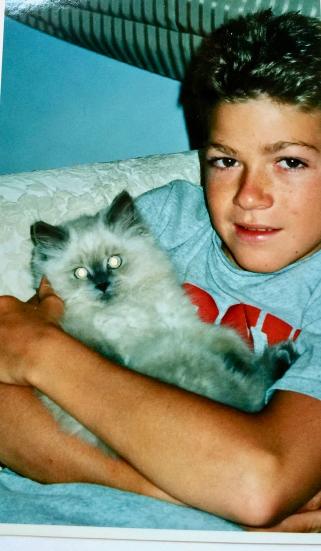 2002 Daniel and cody kitten